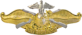 USN - Fleet Marine Force Officer Insignia.png
