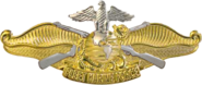 USN - Fleet Marine Force Officer Insignia