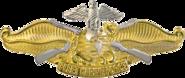 USN - Fleet Marine Force Officer Insignia