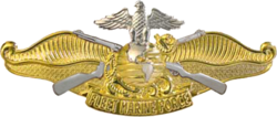 "A highly polished gold and silver metal device depicting the eagle, globe and anchor atop two crossed rifles on a background of ocean swells breaking on a sandy beach and a scroll with the words ""FLEET MARINE FORCE""."