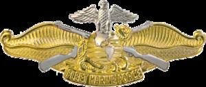 Fleet Marine Force Ribbon - Image: USN Fleet Marine Force Officer Insignia