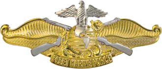 "Fleet Marine Force insignia - A highly polished gold and silver metal device depicting the eagle, globe and anchor atop two crossed rifles on a background of ocean swells breaking on a sandy beach and a scroll with the words ""FLEET MARINE FORCE""."