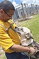 US Navy 100603-N-5539C-014 Machinist's Mate Fireman Edward Burgos, assigned to the amphibious transport dock ship USS Dubuque (LPD-8), plays with a dog during a community service project at the Guam Animals In Need (GAIN) shelt.jpg