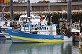 Un chalutier de pêche côtière (69).JPG