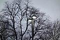 Union Tpke 160th St td (2019-02-24) 01 - AutoZone Lights.jpg