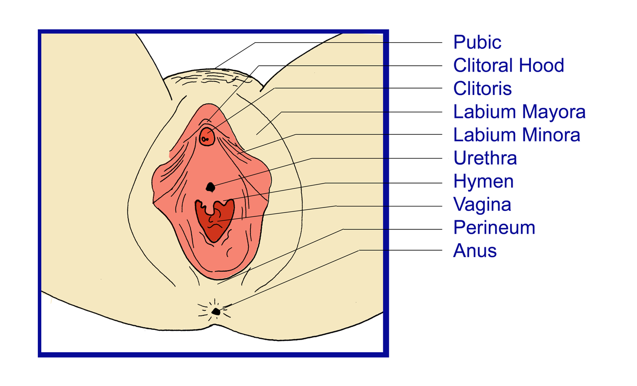tumor vaginal opening
