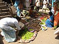 Vegetable Vending - Andul Bazaar - Howrah 2012-03-25 2916.JPG