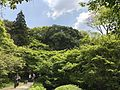 View in Mifuneyama Garden 4.jpg