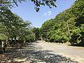 View in Sueyama Shrine.jpg