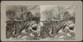 View of snow covered rocks and bridge, from Robert N. Dennis collection of stereoscopic views.png