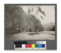 View of south fork of Gualala River. Oct. 1922.png