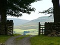 View through a gate above Hardraw - geograph.org.uk - 442577.jpg