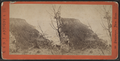 View up the River from the top of the Palisades, by E. & H.T. Anthony (Firm).png