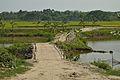 Village Path with Bamboo Bridge across Stream Ichamati - Purba Para - Baduria - North 24 Parganas 2015-04-11 7259.JPG