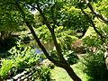 Vue du Jardin Albert Kahn 3.JPG