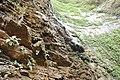 WATER FALL RANI MAHAL 3.jpg