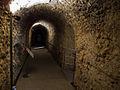WLM14ES - Zaragoza museo del foro romano 00504 - .jpg