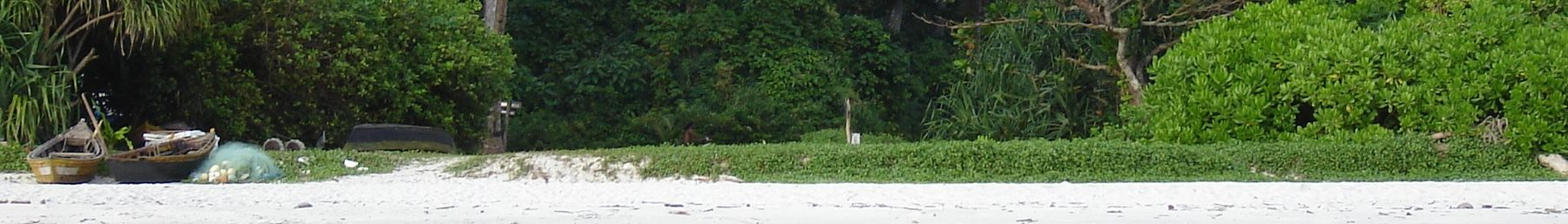 WV banner Havelock island Beach no 7.jpg