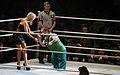 WWE Smackdown Wrestlemania Revenge (8660967449).jpg