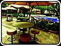 Waikīkī, Honolulu, HI 96815, USA - panoramio (39).jpg