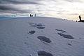 Walk on Ice.jpg