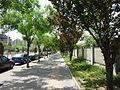 Wangjing, Chaoyang, Beijing, China - panoramio (4).jpg