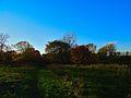 Warner Park - panoramio (56).jpg