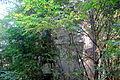 Water Tower.Sokolovo – Kuchino estate.2.JPG