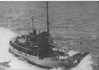 USS <i>Waxsaw</i> (AN-91)
