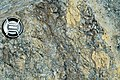 Weathered serpentinite (East Dover Ultramafic Body, Ordovician; Copperhead Road quarry, near East Dover, Vermont, USA) 6.jpg