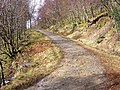 West Highland Way - geograph.org.uk - 152055.jpg