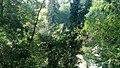 Wetzlar, Friendesstrasse unterhalb des Friedhof, Blick zum Helgebach - geo.hlipp.de - 21805.jpg