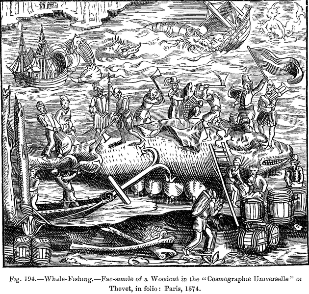 File:Whale Fishing Fac simile of a Woodcut in the Cosmographie Universelle of Thevet in folio Paris 1574.png