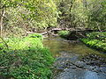 White Pines Forest State Park Spring Creek1.JPG