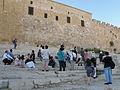 Wikimania 2011 Jerusalem (14).jpg