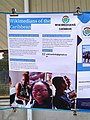 Wikimedians of the Caribbean User Group poster at Wikimania 2020.jpg