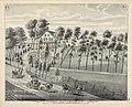 Willow Grove - Residence of Bernard DeWitt Town of Monroe, O - (3989954533).jpg