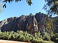 Windjana gorge rock wall.jpg