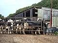 Winkley Hall Farm, Hurst Green - geograph.org.uk - 194024.jpg
