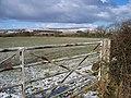 Winter scene - geograph.org.uk - 1702281.jpg