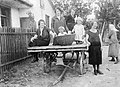 Woman, kids, chariot, yard, ladder, mother, girl, ribbon Fortepan 20665.jpg