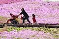 Woman pushes a wheelchair, Hitsujiyama Park; April 2009.jpg