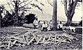 Wood Cutters - The Dinner Hour, MON 1909.jpg
