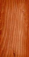 Wood Larix decidua.jpg
