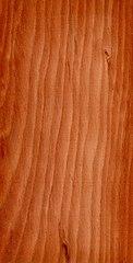122px-Wood_Larix_decidua.jpg