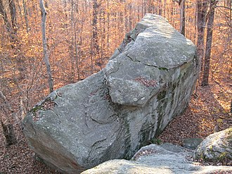 Pottsville Formation - Pottsville Formation boulder in the Rock Garden in Worlds End State Park