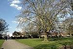 Wormholt Park in London, spring 2013 (7).JPG
