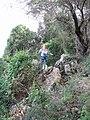 Yagur – Nesher, the Green Path – Mount Carmel 088.JPG