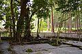 Yamamiya-sengen-jinja iseki-1.JPG