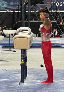 Yul Moldauer American artistic gymnast